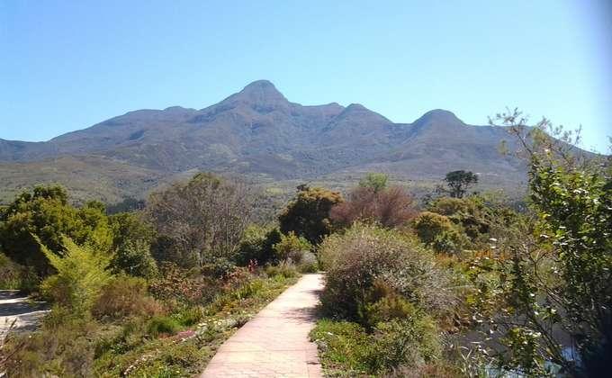 Garden route botanical gardens 13516038461